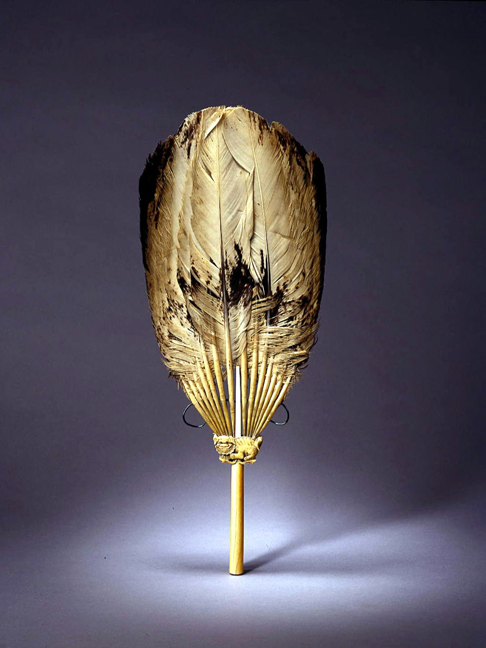An ivory and goose feather fan